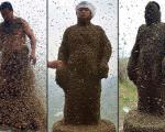 عکس: 460 هزار زنبور روی بدن این مرد!