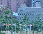 سازمان ملل: وضع اقتصادی در برخی مناطق جهان رو به بهبودی است
