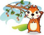 روباه و سنجاب