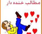 فرهنگ لغت طنز ايراني