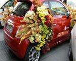 ماشین عروس های شیک