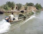 نیشکر خوزستان صدای عراقی ها را هم درآورد / احضار کنسول ایران در بصره