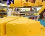 انواع پنیر و چگونگی استفاده از آنها