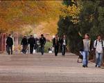 5 مصداق تخلف سیاسی دانشجویان براساس آیین نامه کمیته انضباطی