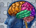 تقویت حافظه به وسیله ورزش