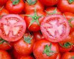 گوجه فرنگی های قرمز، هورمون قاچاق چینی دارد؟