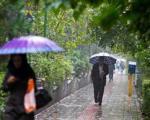 کاهش ۳ تا ۵ درجهای دمای هوا در پایتخت/بارش در تهران ادامه دارد