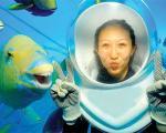 لبخند جالب ماهی به یک زن در زیر آب! (+عکس)
