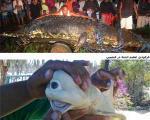 پربازدیدترین عکس های اینترنت در سال ۲۰۱۱