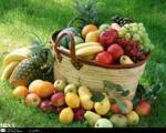 کارشناسان تغذیه:  بعد از غذا میوه نخورید