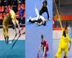 تاریخچه ورزش ووشو