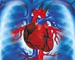 چرا «تپش قلب» میگیریم؟