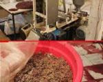 کشف ۴ تن خمیر گوشت فاسد در حاشیه تهران