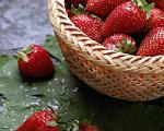 میوه های بهاری برای خانم های باردار