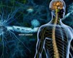 درمان نویدبخشی که علائم فلجی در اماس را از بین برد