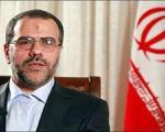 اظهارات سخنگوی وزارت کشور درباره شهادت دانایی فر