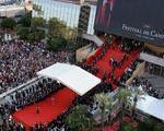 بازار فیلم جشنواره كن امسال رشد داشت