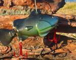 ماهیگیری با طعمه روباتیک