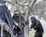 مشاهدات هولناک یک زن جداشده از داعش