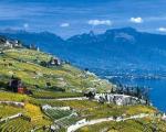 لاواکس نام منطقه ای زیبا در کشور سوئیس