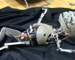 نوزاد روباتیك هم متولد شد! + عکس