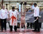 تظاهرات علیه قربانی کردن حیوانات (16+)