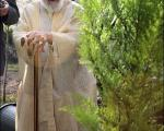 آیت الله جنتی درحال باغبانی