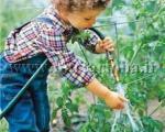 با كوچولــوها باغبانــی كنید
