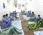اخبار تبعید دانشجوی دکتری به کمپ ترک اعتیاد