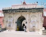 معبد موش های مقدس در هند! +عکس
