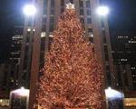 ساخت درخت كریسمس ۱۲ متری با ۸۰ هزار قاشق پلاستیكی