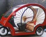 اتومبیلی از جنس بامبو +عکس