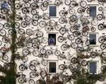 باور کردنی نیست! ۱۲۰ دوچرخه روی دیوار