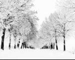مشکلات زمستان برای اعصاب و روان