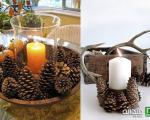 پاییزی کردن منزل با تزئین میوه کاج!