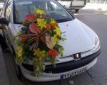 آخرین باری که ماشین عروس دیدید کی بود؟