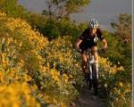 ماجرای سفر من و خدا با دوچرخه !