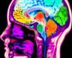 کشف مولکول غمگین مغز