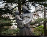 عکس: به نگاه مادر سوگند ...