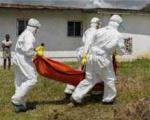 سایه رمالان آفریقایی بر ابولا
