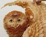 باغ وحشی با حیوانات چوبی +تصاویر