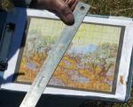 پیاده کردن نقاشی معروف جهان روی زمین کشاورزی +تصاویر