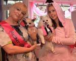 مراسم ازدواج پر سر و صدای دو سگ پولدار! +تصاویر
