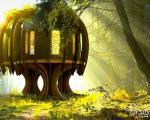 آرامش در اولین خانه درختی کامل جهان