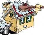 خانه تکانی در تابستان با مواد طبیعی