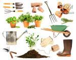 راهنمایی هایی برای باغبانی در بهار