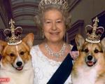 قاچاق مواد مخدر تامین کننده بخشی از ثروت ملکه انگلیس