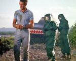 جیمز باند ۵۰ ساله شد / چه کسانی نقش مامور ۰۰۷ را بازی کردند؟ + گزارش تصویری