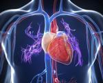 تاثیر ورزش تایچی بر سلامت قلب
