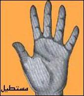 شکل کف دست , کف بینی , خصوصیات اخلاقی